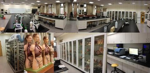 護理科-解剖生理實驗室